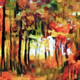 Autumn Thicket by Susan Maxwell Schmidt