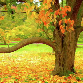 Autumn Tree And Leaves Three by Mo Barton