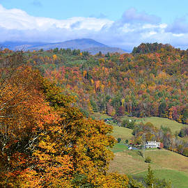 Autumn View by Dianne Sherrill