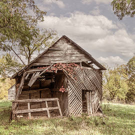 Autumn Vines on the Barn in Farmhouse Tones by Debra and Dave Vanderlaan