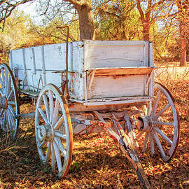 Autumn Wagon in the Hill Country by Lynn Bauer