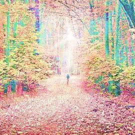 Autumn Walk #2 by Slawek Aniol