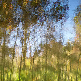 Autumn woodland reflected in rippling lake.  by Fem Entangled