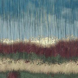Autumnal rain by Bentley Davis