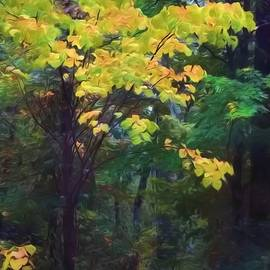 Autumn's Golden Crown by Chrystyne Novack