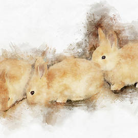 Baby Bunnies - The Art of Cuteness
