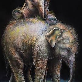 Baby Elephants Portrait by Asp Arts