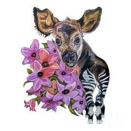 Baby Okapi by Maria Sibireva