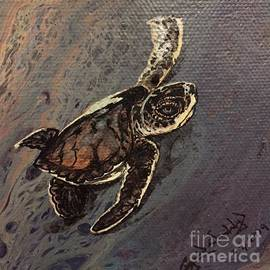 Baby Turtle Sunrise by Crystal Dombrosky