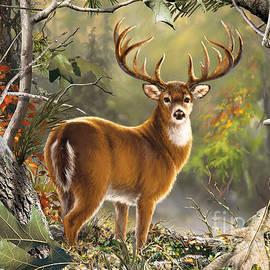 Back Country Buck  by Nehemiah Art