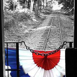 Back Door View by Pat Turner