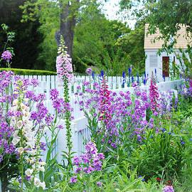 Back Yard Landscape by Marilyn DeBlock