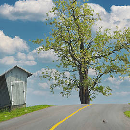 Backroad, Pennsylvania 2012 by Michael Chiabaudo