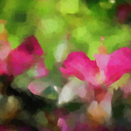 Backyard Hibiscus Abstract by Francis Sullivan