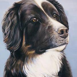 Bailey by Suzette Castro