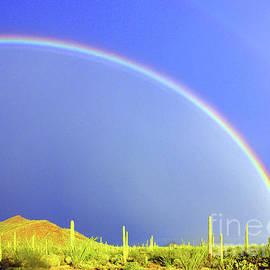 Bajada Rainbow by Douglas Taylor