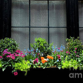 Balcony with Flowers by Ivete Basso Photography