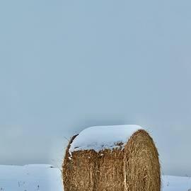 Baling On Winter by Greg Hayhoe