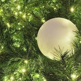 Balloon in Christmas Tree by Steven Ralser