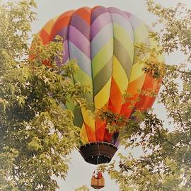 Balloon Ride by Harvest Moon Photography By Cheryl Ellis