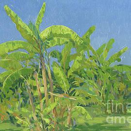 Banana trees. Belek by Simon Kozhin