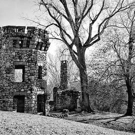 Bancroft's Castle by Betty Denise