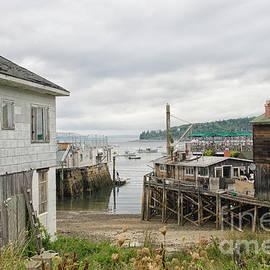 Bar Harbor, Acadia Natl Park, Maine by Patricia Hofmeester