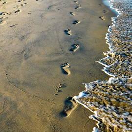 Bare Footprints on the Sand by Lyuba Filatova
