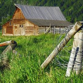 Barn Beyond the Fence  by Lori Frisch