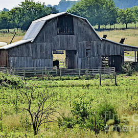 Barn In Tennessee by Kathy M Krause