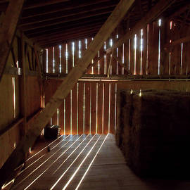 Barn Light In The Morning  by Patricia Keller