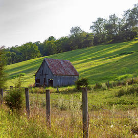 Barn on a Summer Evening by David Beard