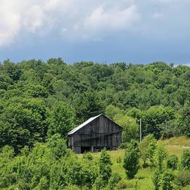 Barn On Hillside - Frostburg MD by Daniel Beard