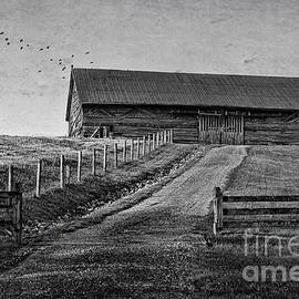 Barn on the Hill by Laurinda Bowling