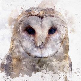 Barn Owl in Watercolor by Susan Maxwell Schmidt