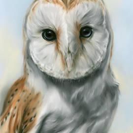 Barn Owl Perceptive Gaze by MM Anderson