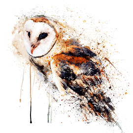 Barn Owl Watercolor Painting by Marian Voicu