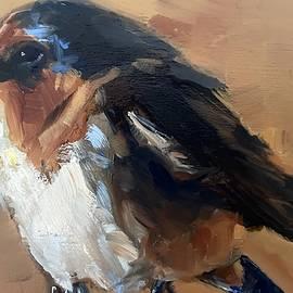 Barn Swallow by Gary Bruton