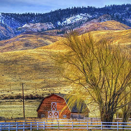 Barn with a View by Donna Kennedy