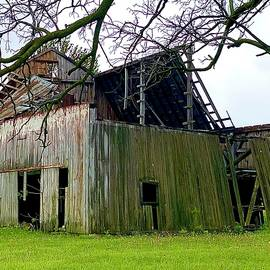 Barn Wood by Joseph Schofield