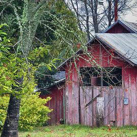 Barnyard ... by Judy Foote-Belleci