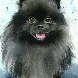 Barry Black Pomeranian Dog Painting by Dora Hathazi Mendes