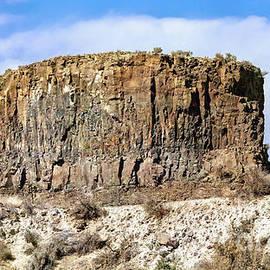 Basalt Rock Formation by Jean OKeeffe Macro Abundance Art