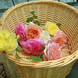 Basket Of Beautiful by Daniel Beard