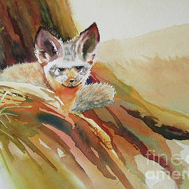Bat Eared Fox by Nancy Charbeneau