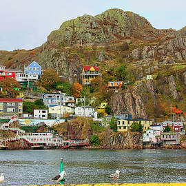 Battery Hill St Johns Newfoundland front view by Tatiana Travelways