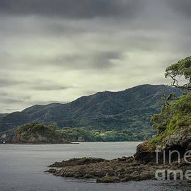 Bay of Islands, New Zealand by Elaine Teague