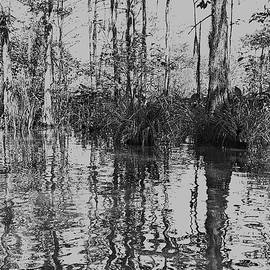 Bayou Trees 1 by Fang Norwood
