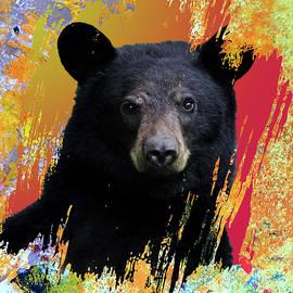 Be a Bear by Nancy Merkle