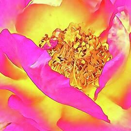 Be still my heart  by Art Studio of Dottie Phelps Visker